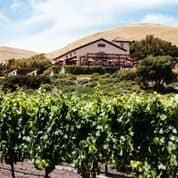 Gloria Ferrery winery in Sonoma County