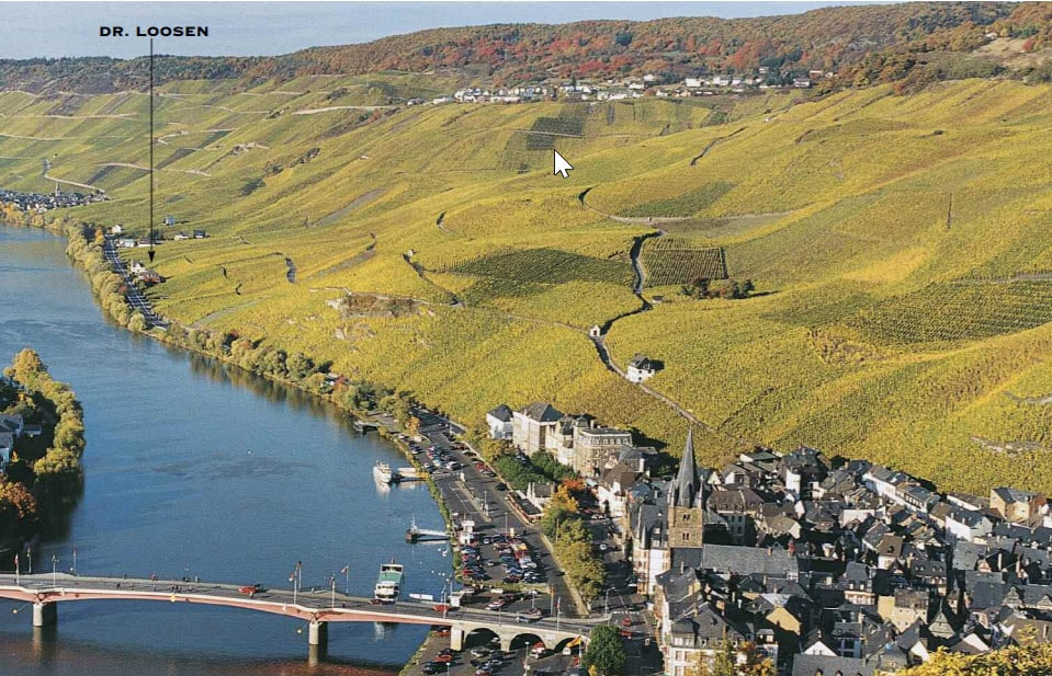 Loosen Riesling hillside slope in Germany