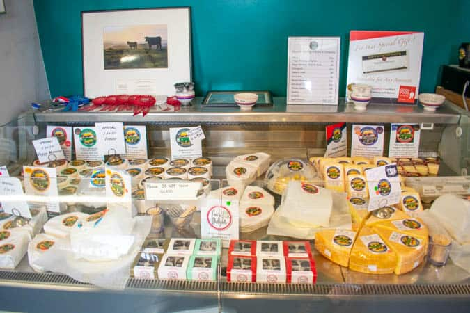 Organic Cheese Counter at Nicasio Valley Cheese
