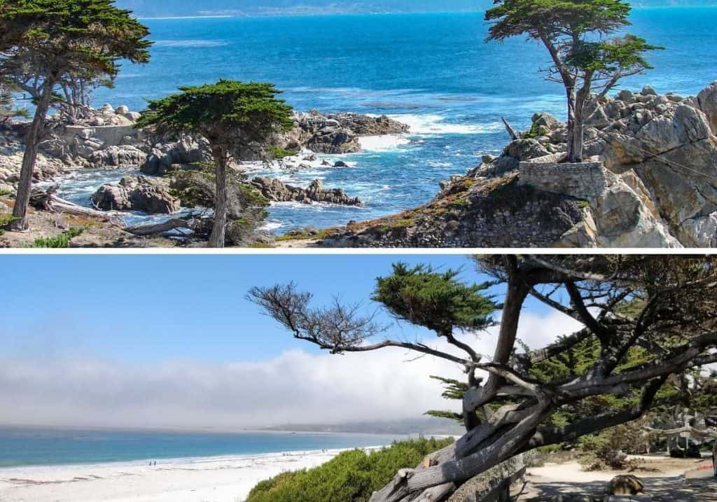 2 landscape photos of carmel beach