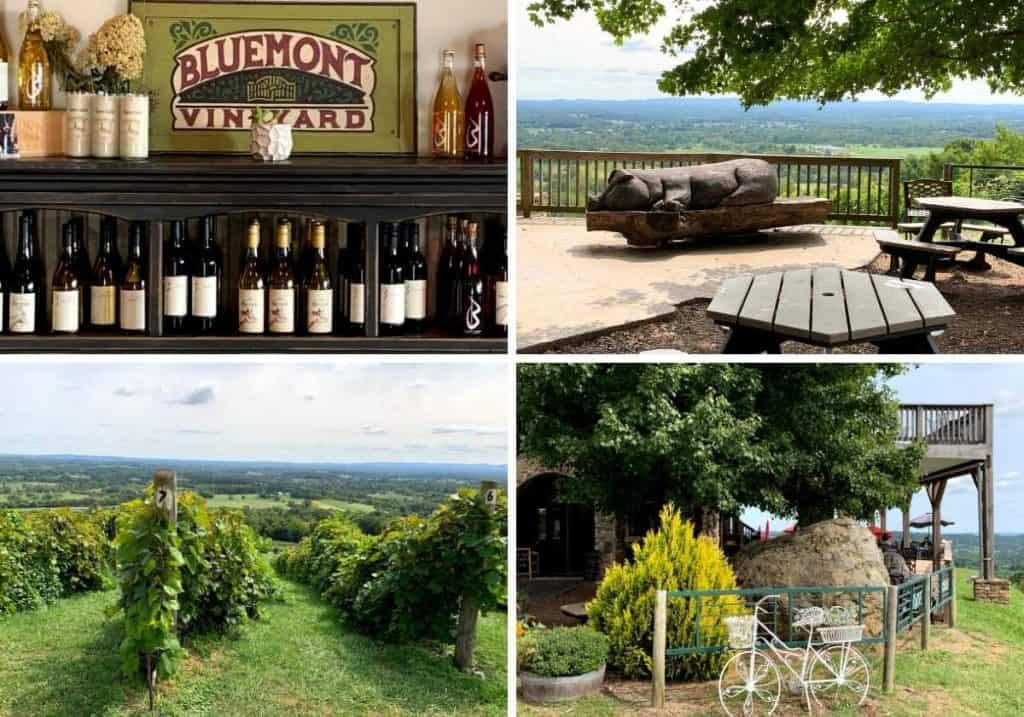4 pictures of BlueMont Vineyard